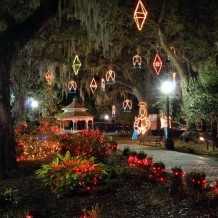 Christmas Amid the Oaks